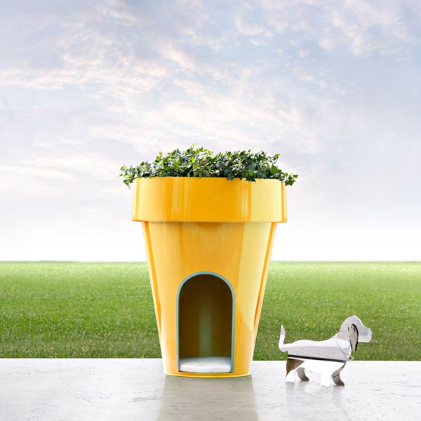 Pot Niche Dog-E Jaune DeCastelli JardinChic