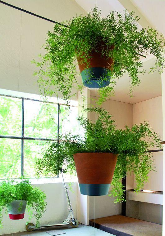 familypot suspension jardinchic. Black Bedroom Furniture Sets. Home Design Ideas
