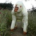 Statue Gorille Debout Laqué Blanc
