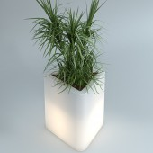 Pot Triton H48cm Lumineux