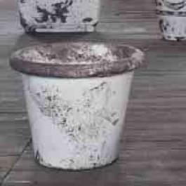 Pot Camelia Délavé 1825 JardinChic