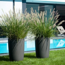 Pot Geisha Piscine Eternit JardinChic