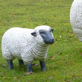 Statue Mini Mouton Blanc Tête Noire Tex Artes Jardinchic
