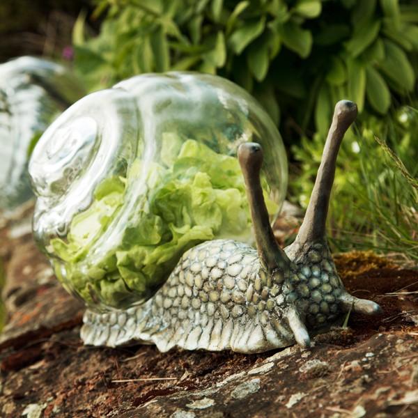 Zoom Cloche à Salade Escargot Jardinchic