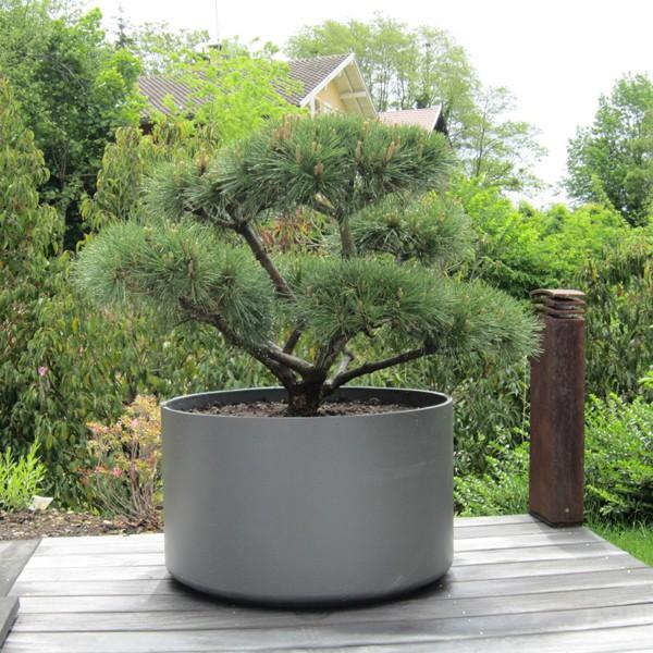 Jardini re delta ronde jardinchic - Jardiniere moderne ...