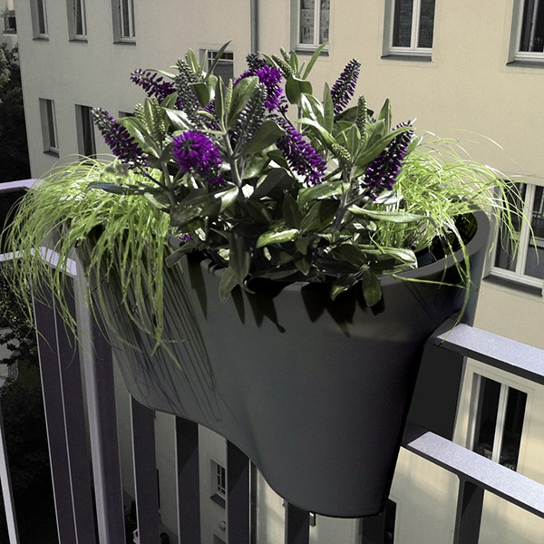 jardini re de balcon steckling duo jardinchic. Black Bedroom Furniture Sets. Home Design Ideas