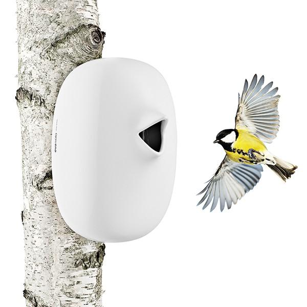 nichoir oiseaux jardinchic. Black Bedroom Furniture Sets. Home Design Ideas