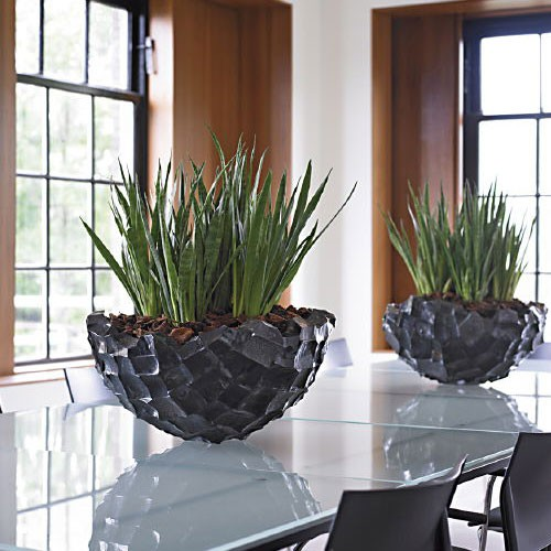 jardini re d 39 int rieur ocean bowl jardinchic. Black Bedroom Furniture Sets. Home Design Ideas