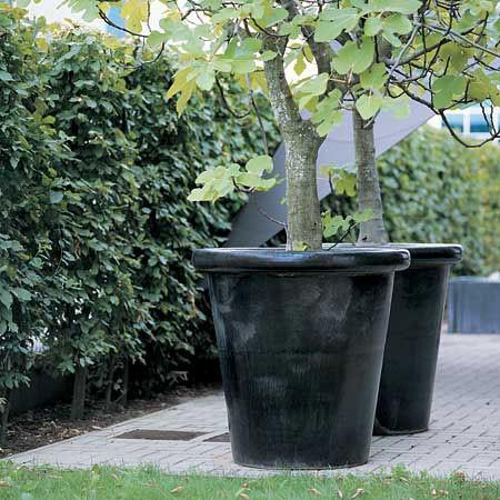 Pots London Noir Domani JardinChic