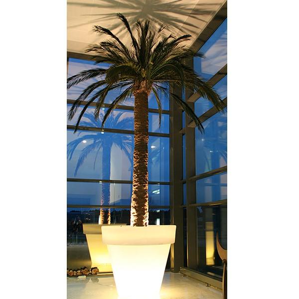 Pot Vas Two Light avec Container Serralunga Jardinchic