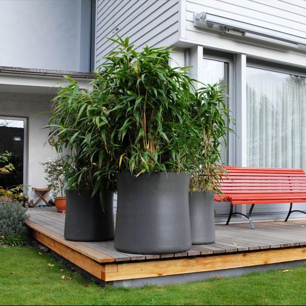 pot sushi jardinchic. Black Bedroom Furniture Sets. Home Design Ideas