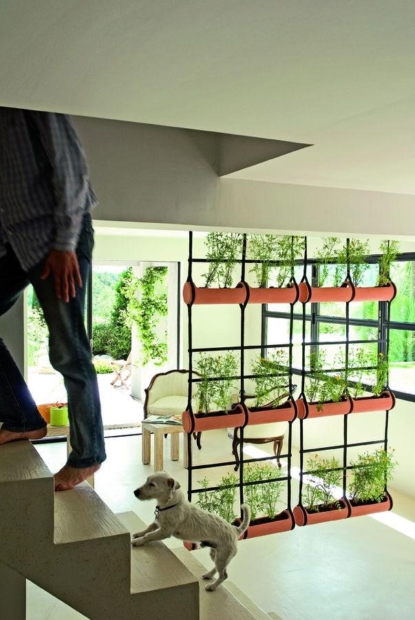 Jardiniere Mur Vegetal Treille