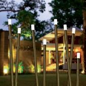 Borne Bamboo