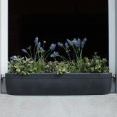 Jardinière pour Rebord de Fenêtre Windowgreen
