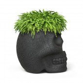 Pot Mexico Small Planter