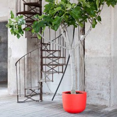 Pot Cup Haut Rouge 1825 JardinChic