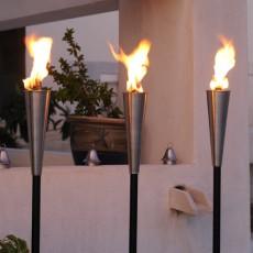 Torche Palma