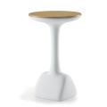 Table de Bar Armillaria