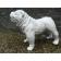Statue Bulldog Anglais Laqué Blanc Texartes Jardinchic