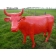 Statue Vache Rouge - Vue de face - Tex Artes Jardinchic